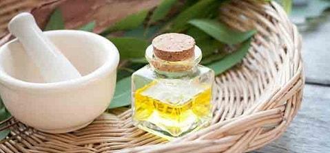 minyak kayu putih